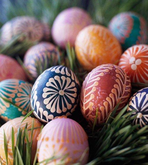 egg (9)