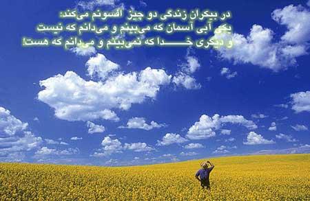 elham (11)