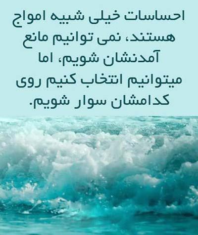 elham (14)