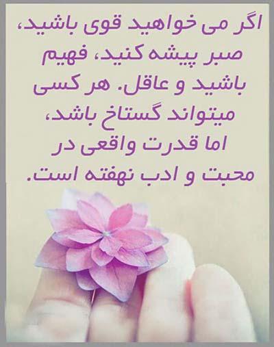 elham (15)