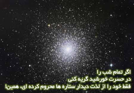 elham (9)