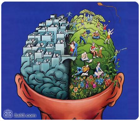 نیم کره فعال مغز