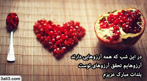 yalda (1)