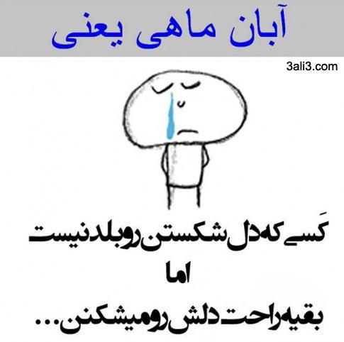 aban (15)