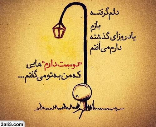 safar (6)