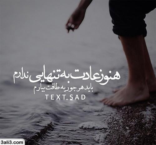 safar (7)