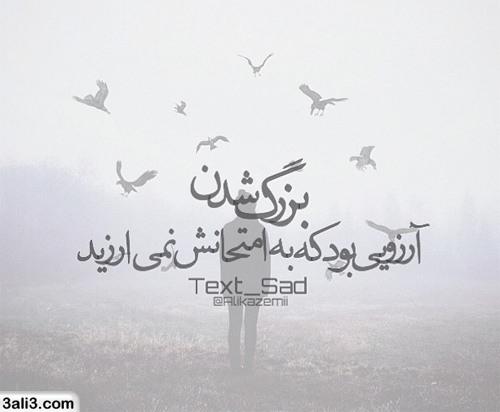 safar (8)