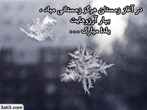 yalda (10)