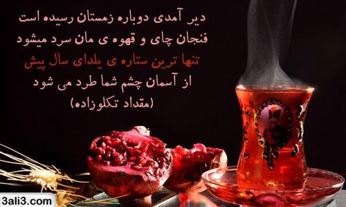yalda (9)
