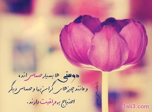 aramesh (5)