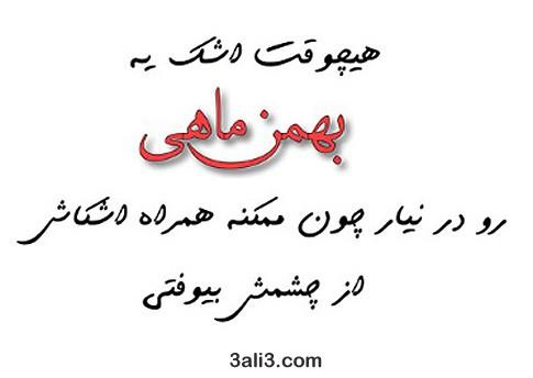 bahman (11)