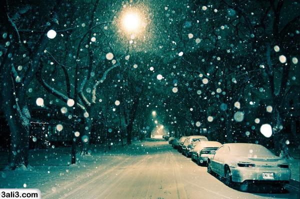 winter (14)