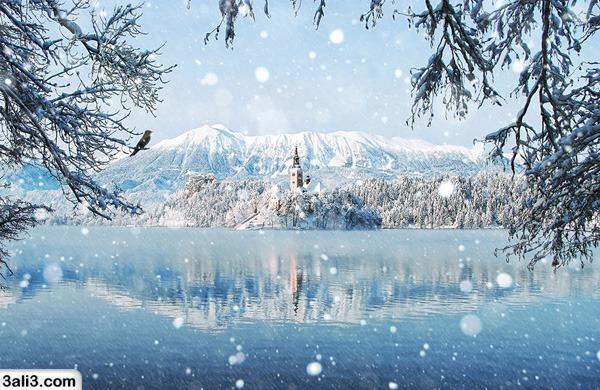 winter (17)