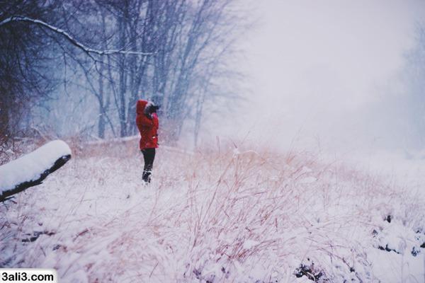 winter (22)