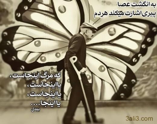falsafi (14)