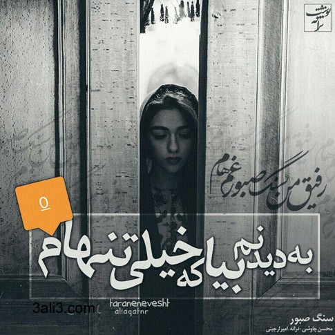 taraneh (11)