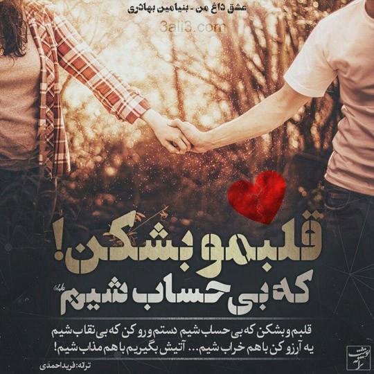 taraneh-graghy (15)