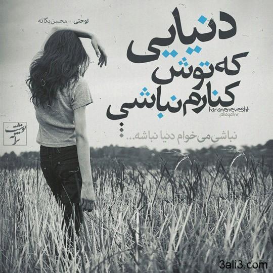 taraneh-graghy (8)
