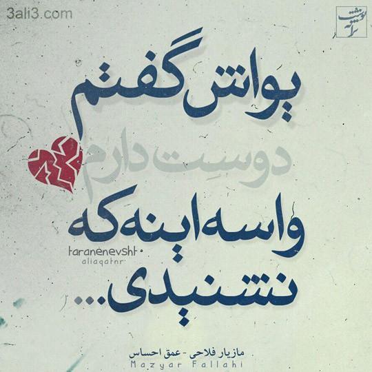 taraneh-graghy (9)