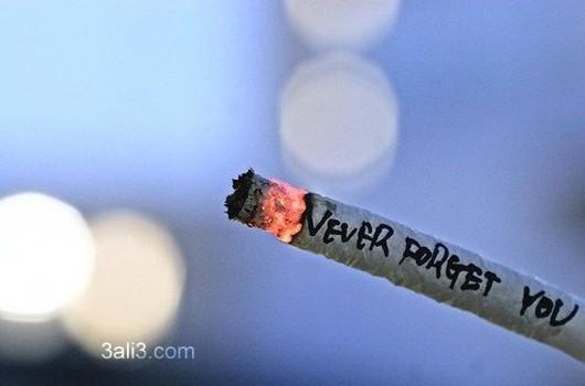 sigaar (2)