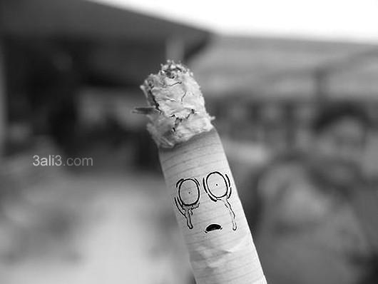sigaar (6)