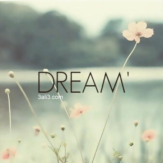 dream (7)