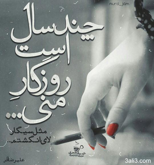 taraneh-gh (14)