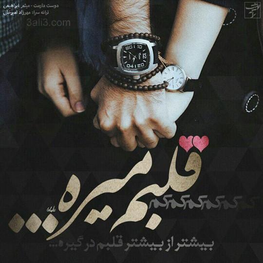 taraneh-gh (17)
