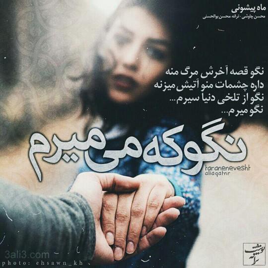 taraneh-gh (7)