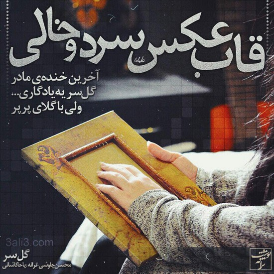 taraneh-graphy (15)