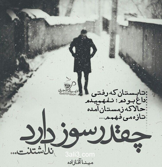 taraneh (20)