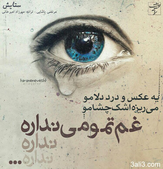 taranehaa (15)