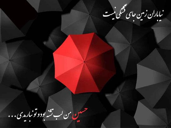 moharram (10)