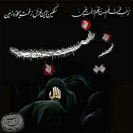 moharram (14)