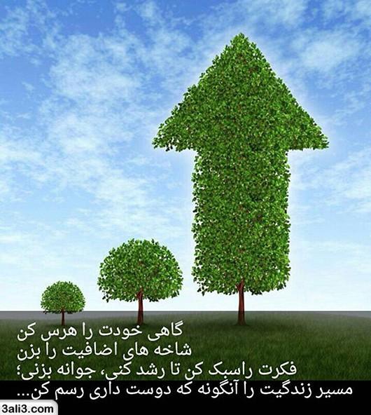 falsafi (8)
