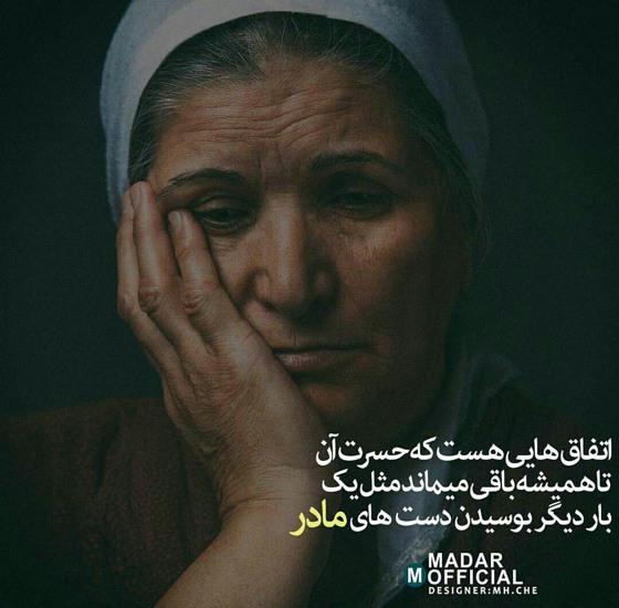 madar (1)