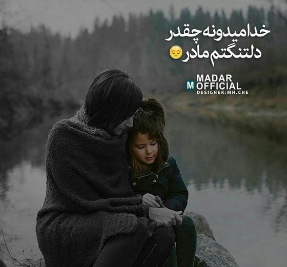 madar (5)