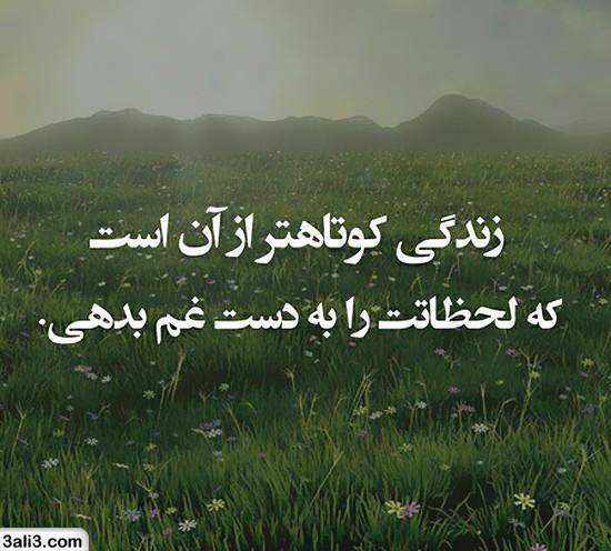 falsafi (1)
