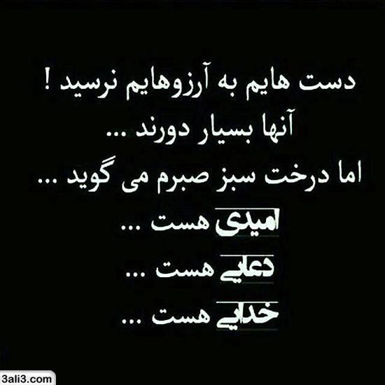 falsafi (2)