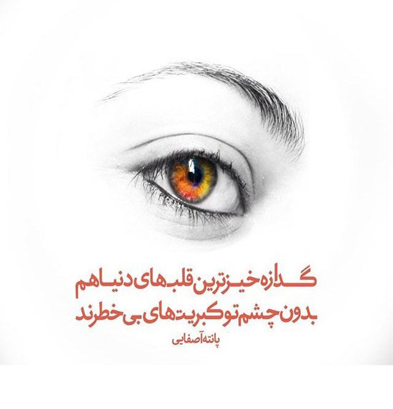 sher (3)