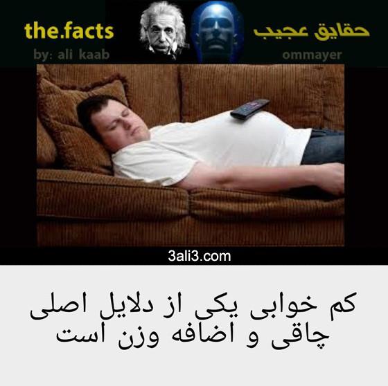 fact (10)