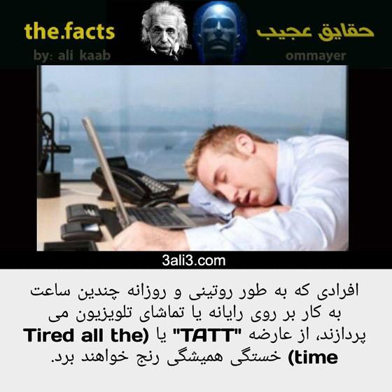 fact (13)