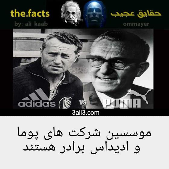 fact (16)