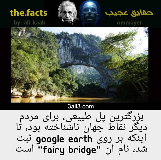 fact (4)