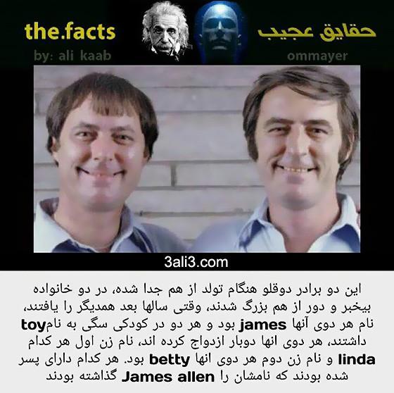 fact (9)