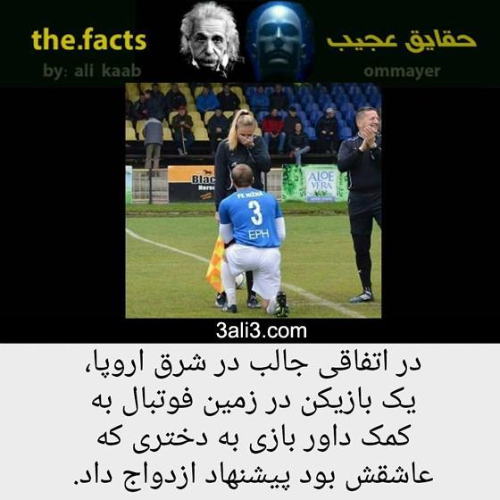 fact-new (10)