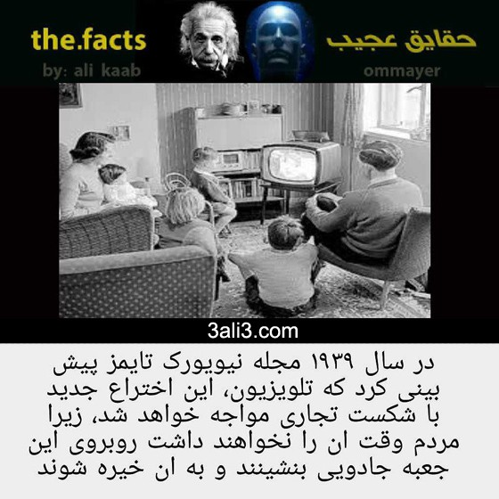 fact-new (11)