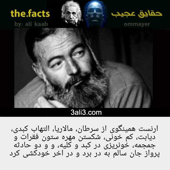fact-new (13)