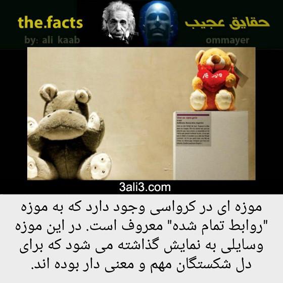 fact-new (15)