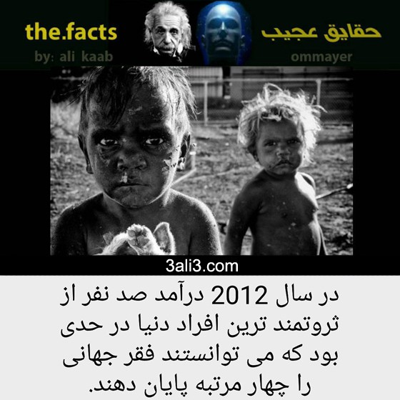 fact-new (16)